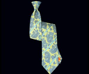 Nautilus Lemon Paisley Striped Tie