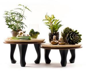 Nir Meiri | Bamboolicious