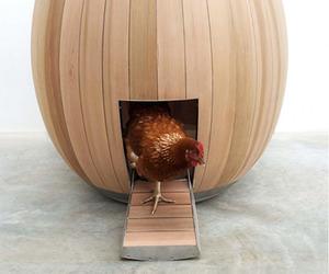 Nogg shelters hens elegantly