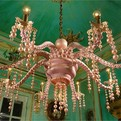Octopus Chandelier For Sea House Concept