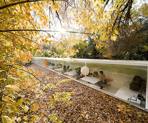 Office in the Woods designed by Selgas Cano