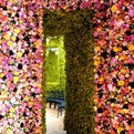 One Million Flowers: Dior Installation by Raf Simons