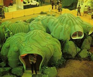 Organic Mushroom Home