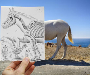Pencil vs Camera by Ben Heine
