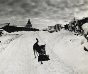 pentti sammallahti - photography classics from finland