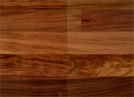 Peruvian Olivewood From Expressive Woods