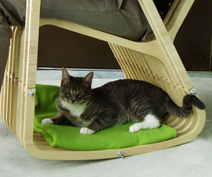 Pet and Person Chair