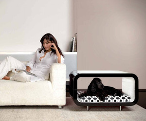 Pet Suite Furniture by Forma Italia