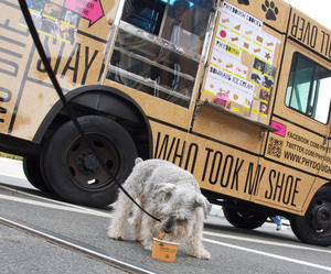 Phydough - Gourmet Food Truck For Dogs