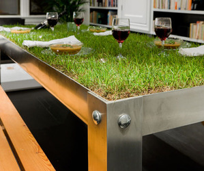 Picnic Table: Indoor Landscape