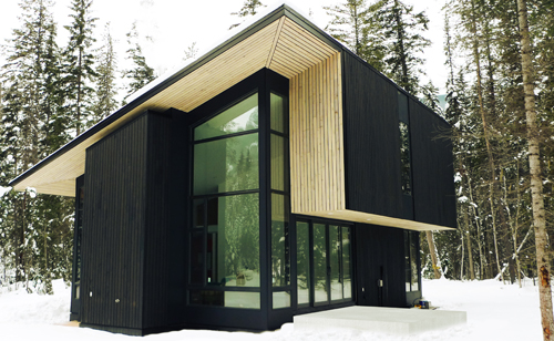 Pioneer Cabin By Form Amp Forest