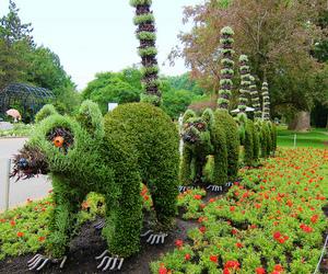 Plant Sculptures in Montréal