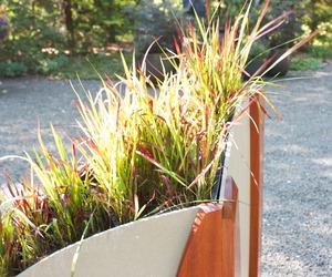 Planters #9 by Nico Yektai