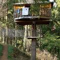 Playful Treehouse Refuge in Spain