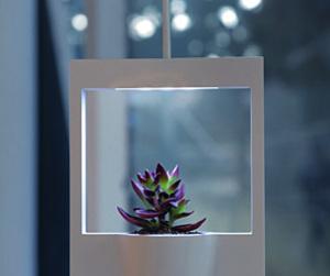 Polaroid Vase by Jung Hwajin