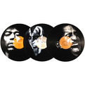 Portraits On Vinyl Records