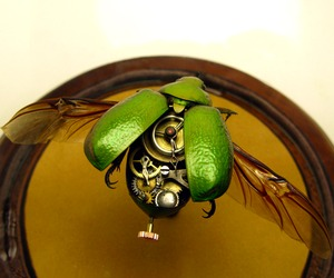 "Pseudo-Victorian mechanical ""steampunk"" insects"