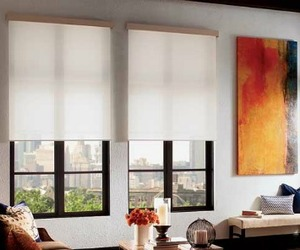 QMotion Wireless Motorized Roller Shades