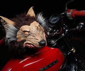 Realistic Wolf Helmet