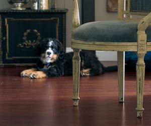Rich Cognac Bamboo Flooring | Teragren