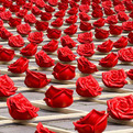Romantic Installation Composed of 1,000 Roses by Ottmar Hörl