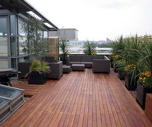 Rooftop Garden, An Alternative Way to Reduce Global Warming