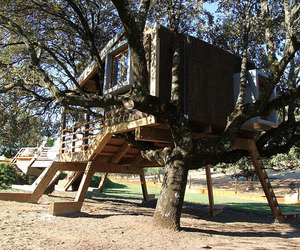 Rooted Tree House by Urbanarbolismo