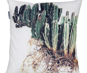 Scatter Cushions by Clinton Friedman