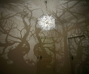 Shadowy Chandelier