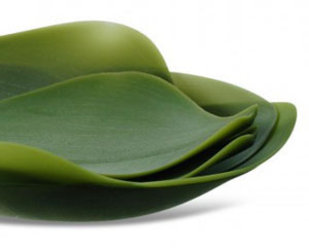 Seasons :: leaf-shaped dishes