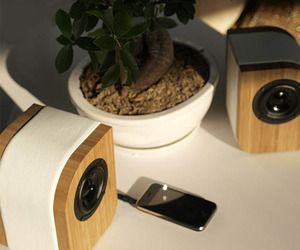 Serene Audio Speakers