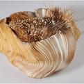 Sivan Royz | Textiled Blossom