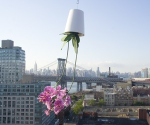 Sky Planter by Boskke