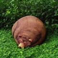 Sluggish Bear Bean Bag
