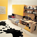 Small Space Teen Bedroom Design