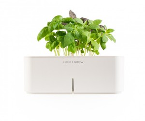 Smartpots by Click and Grow