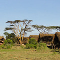 Sneak Peek: Ekorian's Mugie Camp, Kenya