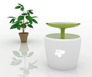 Solar Plant by Bon Seop
