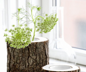 Stem Bowl and Vase  by Ferm Living
