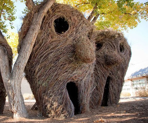 Stickworks By Patrick Dougherty