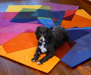 Stylish and Colorful Rug Design to Beautify Your Interior