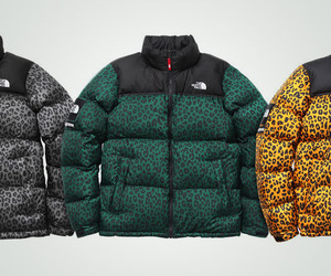 Supreme x The North Face – Nuptse Down Jacket