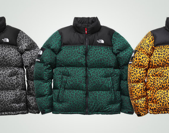 Supreme X The North Face Nuptse Down Jacket