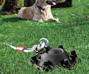 Sureswivel Pet Tie-Out