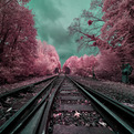 Surreal Infrared Landscape Photography