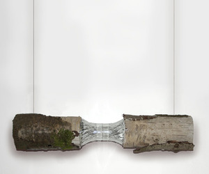 Sustainable Lamp Design Inspired by Nature | Robin Brown