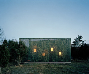 Swedish home mirrors its surroundings
