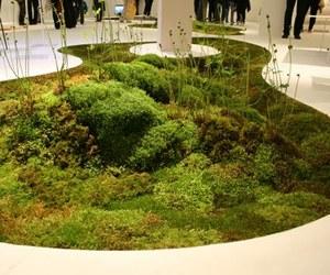 Terramac: A Living Carpet