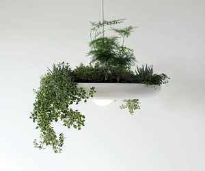 The Babylon Plantable Light Fixture by Ryan Taylors
