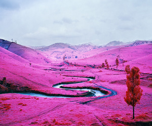 The Enclave by Richard Mosse at Venice Biennale 2013